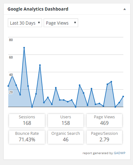 screen shot of page view report in analytics widget